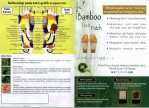 Jual Koyo Bamboo gold